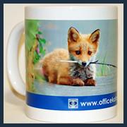 展示mug