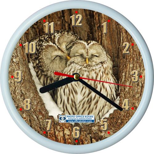 壁掛け時計ミニ・エゾフクロウ