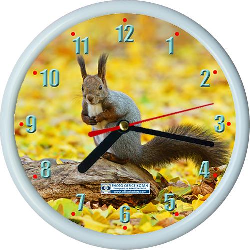 壁掛け時計ミニ エゾリス