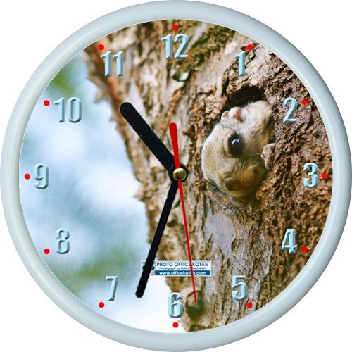 壁掛け時計ミニ エゾモモンガ