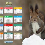 2015A4ezorisu
