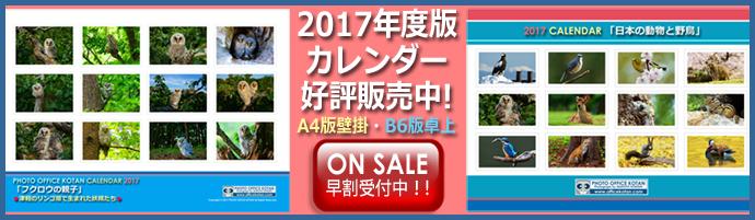 2017calendar690