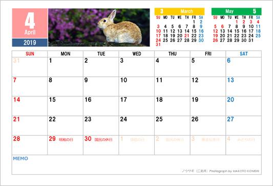 4月 ウサギ