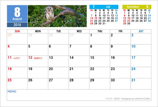 8月 フクロウ