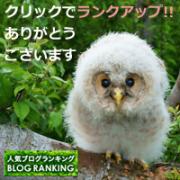 BlogRanking2015