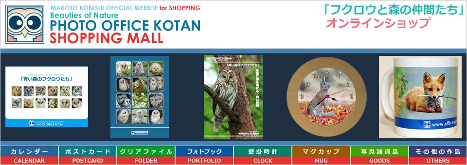 shoptop_1